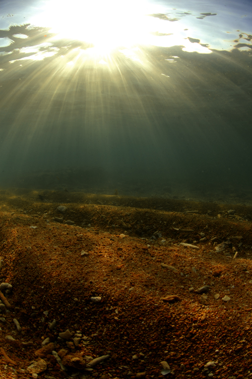 sunrays in shallow water