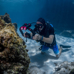From Compact to DSLR: Testing SeaLife's Flex-Connect Arm System
