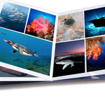 5 Tips for Selecting an Underwater Photography Portfolio