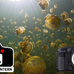 User's Guide for Underwater Video with the Canon 5D Mark III and Magic Lantern