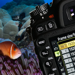 Basic Settings for DSLR Underwater Video