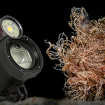 Review of the i-Divesite Symbiosis SS-2 Lighting System