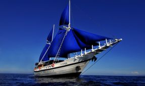 Sailing With Sirens - Underwater Photography in Southern Leyte