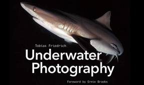 "Book Review: Tobias Friedrich's ""Underwater Photography"""