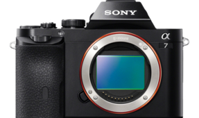 Best Underwater Photography Lenses for the Sony A7 Mirrorless Camera