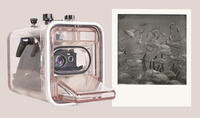 Going Old School – Polaroid Underwater Photography