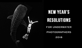 New Year's Resolutions for Underwater Photographers