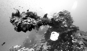 Return to the Ghost Fleet of Chuuk Lagoon