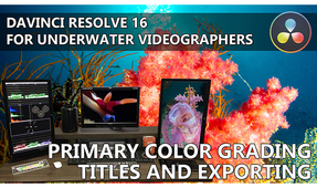 DaVinci Resolve for Underwater Videographers: Part III – Color Grading, Titles and Exporting