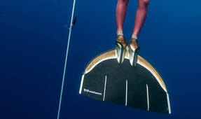 Go Inside Shooting a Freediving Competition