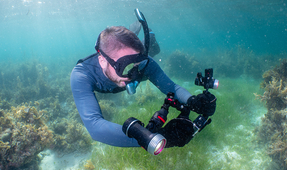 GoPro Ready with the SeaLife Sea Dragon 2000F Photo/Video Light