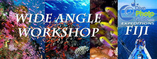 underwater photography workshop Fiji