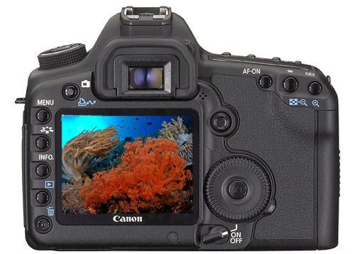 underwater image in camera
