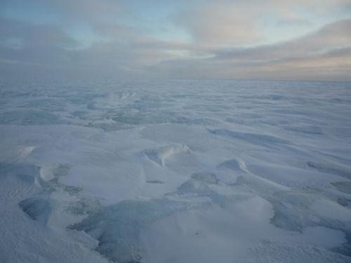 The Barren Arctic Ocean