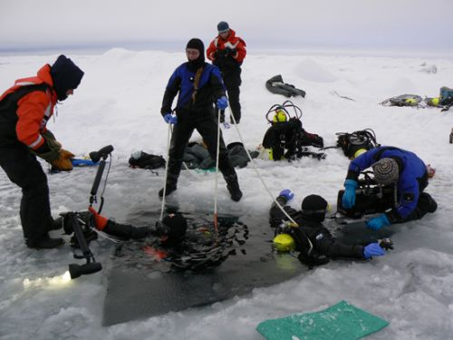 underwater photographers enter ice
