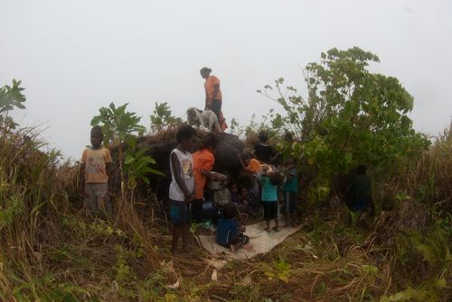 Pele island villagers protect themselves from tsunami