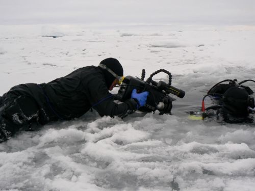 Underwater photographer in the arctic ice
