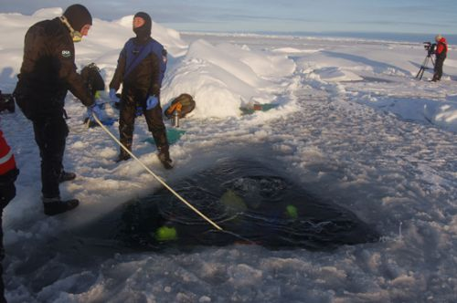 Divers enter hole in the arctic ice