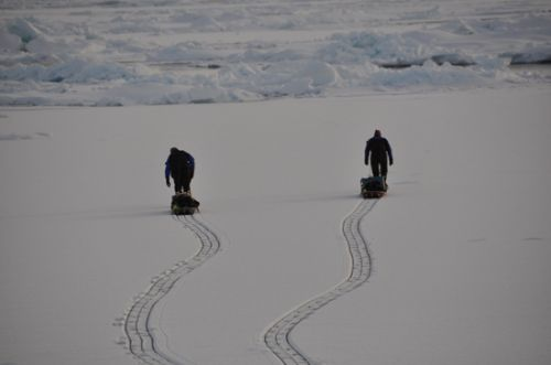 Carrying equipment in the arctic