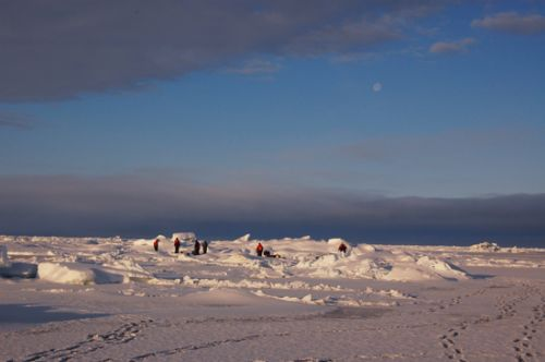Divers dig a whole in the arctic ice