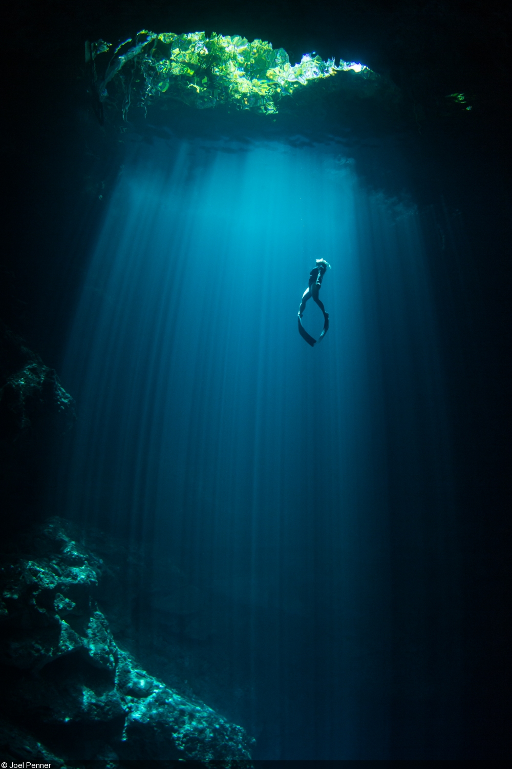 Cenotes photographing the light and dark side - Dive dive dive ...