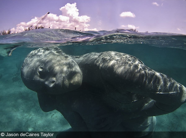 Giant Underwater Sculpture Revealed in the Bahamas