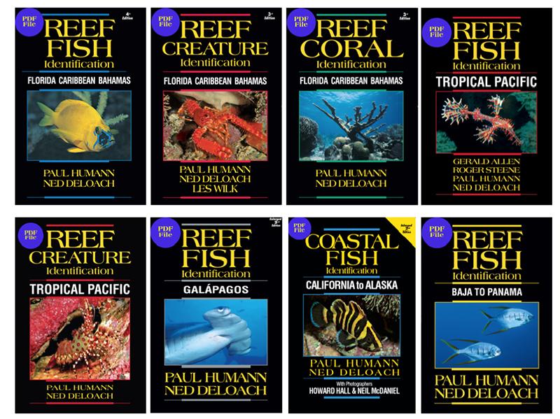 Reef Fish Identification Ebook