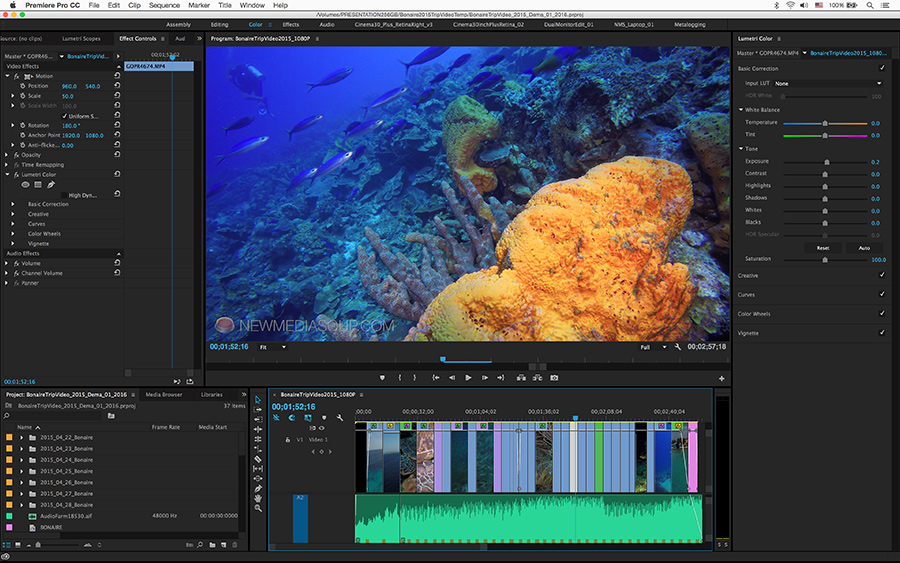 Editing Tips for Underwater Videographers Using GoPro