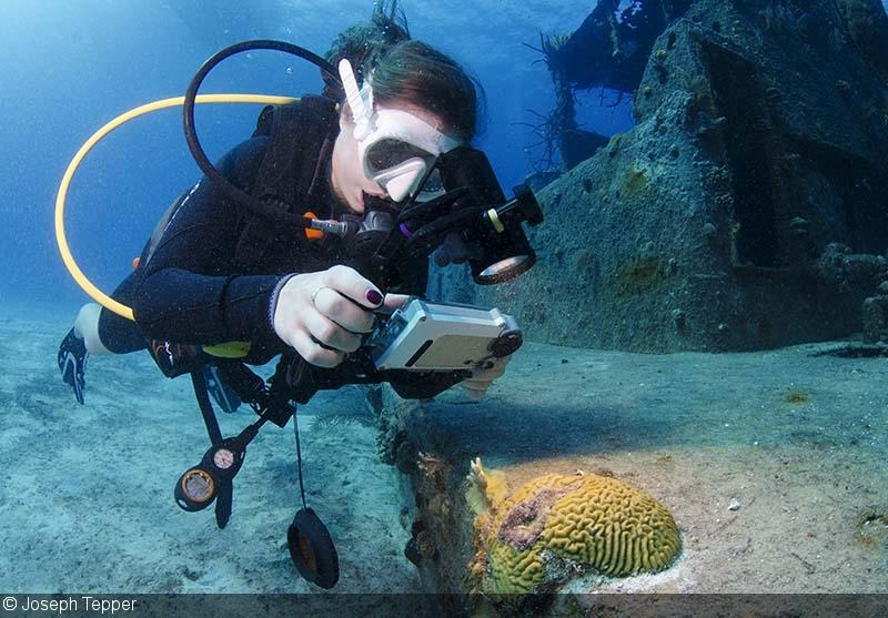 Underwater amateur camera equipment foto 888