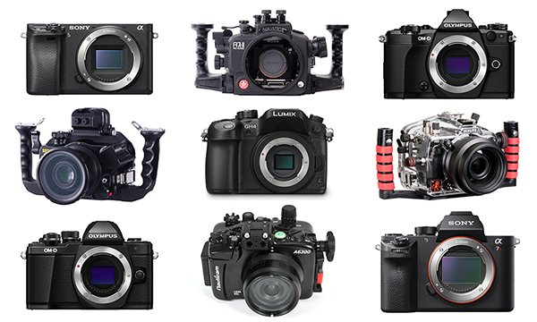 2016 Top Mirrorless Cameras and Housings for Underwater Photography