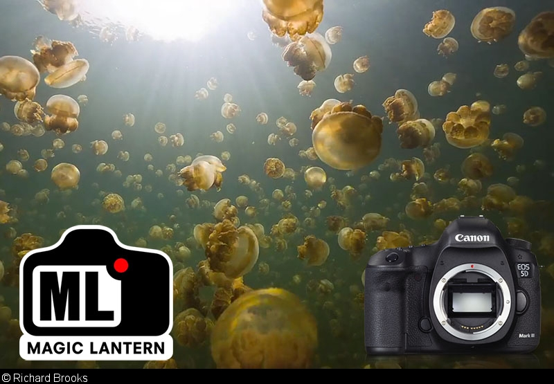 User's Guide for Underwater Video with the Canon 5D Mark III