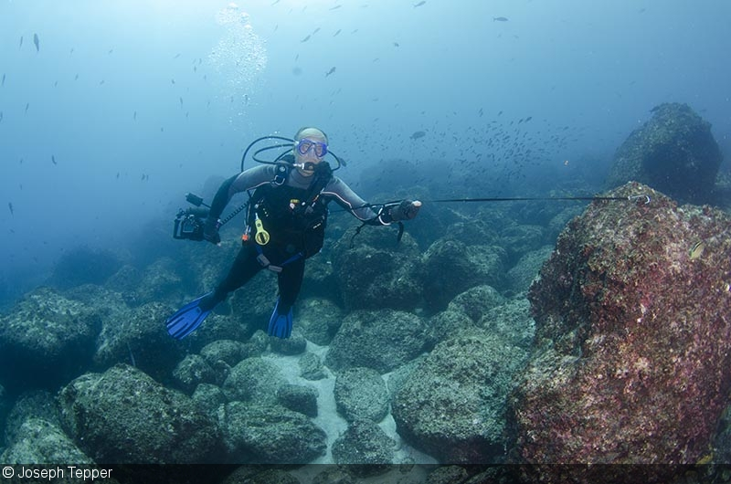 Underwater Photography with a Reef Hook