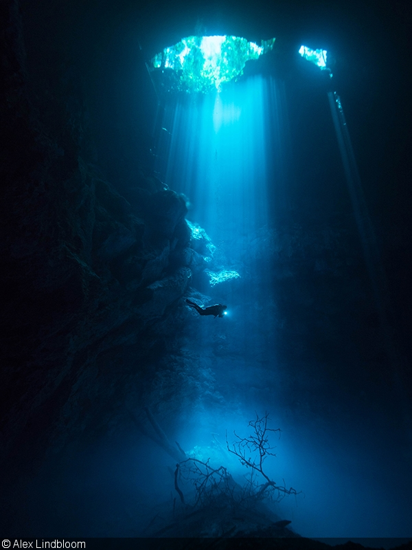 The Best Of Mexico With The Panasonic GH Part I The Cenotes - 34 incredible underwater photographs reveal nature best