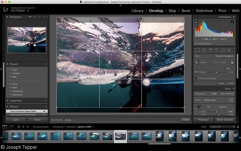 Quick Tip: Lightroom Shortcuts for Underwater Photographers