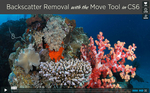 Video: Backscatter Removal Tutorial