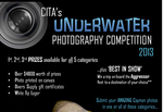 Cayman Islands Underwater Photo Competition Announced
