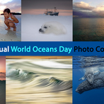 Third Annual World Oceans Day Photo Competition