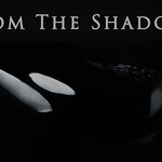 "Jacques de Vos Orca Film ""From the Shadows"" Premiering at the 2017 Wildlife Conservation Film Festival"