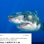 President Trump Inspires Shark Charity Donations