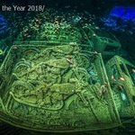 2018 Underwater Photographer of the Year Winners Announced