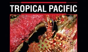 DiveBooks.Net To Launch Reef Creature Identification - Tropical Pacific In Asia On October 25th.