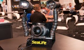 DEMA 2010 Coverage - Day 4