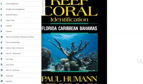 Reef ID Caribbean Books Now Available in E-Versions