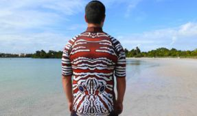 Lion Suit Patterned Wetsuit Claims to Deter Sharks