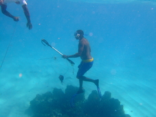 Hawaii Bans Scuba Spearfishing
