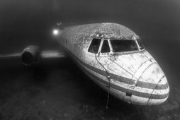 "Announcing ""Wrecks and Artificial Reefs"" Winner"