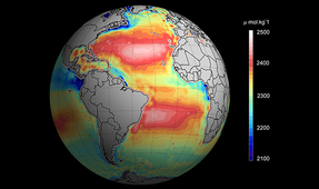 Revealing Ocean Acidification from Space