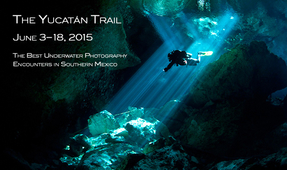 "DPG Leading Expedition to ""Yucatan Trail"""