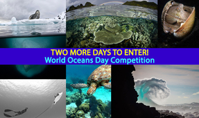 Reminder: World Oceans Day Photo Contest