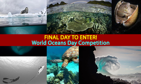 Last Reminder: World Oceans Day Photo Contest